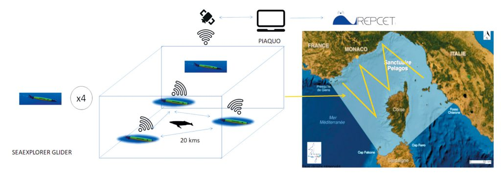 Dynamic mapping of the sensitivity of marine ecosystem to underwater shipping noise
